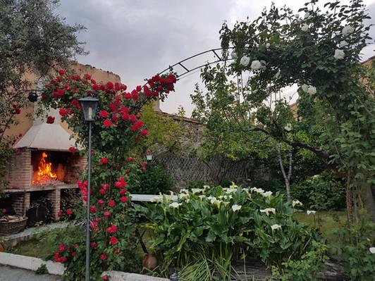 Barbacoa en el jardín - zona de césped