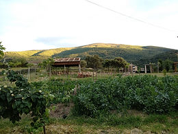 Sierra de San Vicente en Almendral de la Cañada