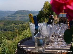 Paisagens e vinhos.jpg