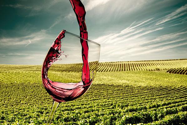 taça vinícola-vinho- (1).jpg