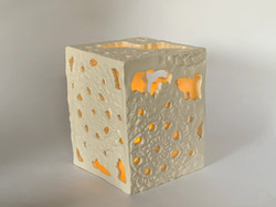 Top-Enclosed White Lace Luminary for Dr. Smith