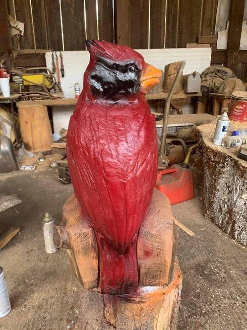 """28"""" Red Cardinal"""