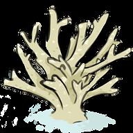 Coral, acropora, marine life, illustration, art, digitalart, scientific illustration, Brianna Leahy Art
