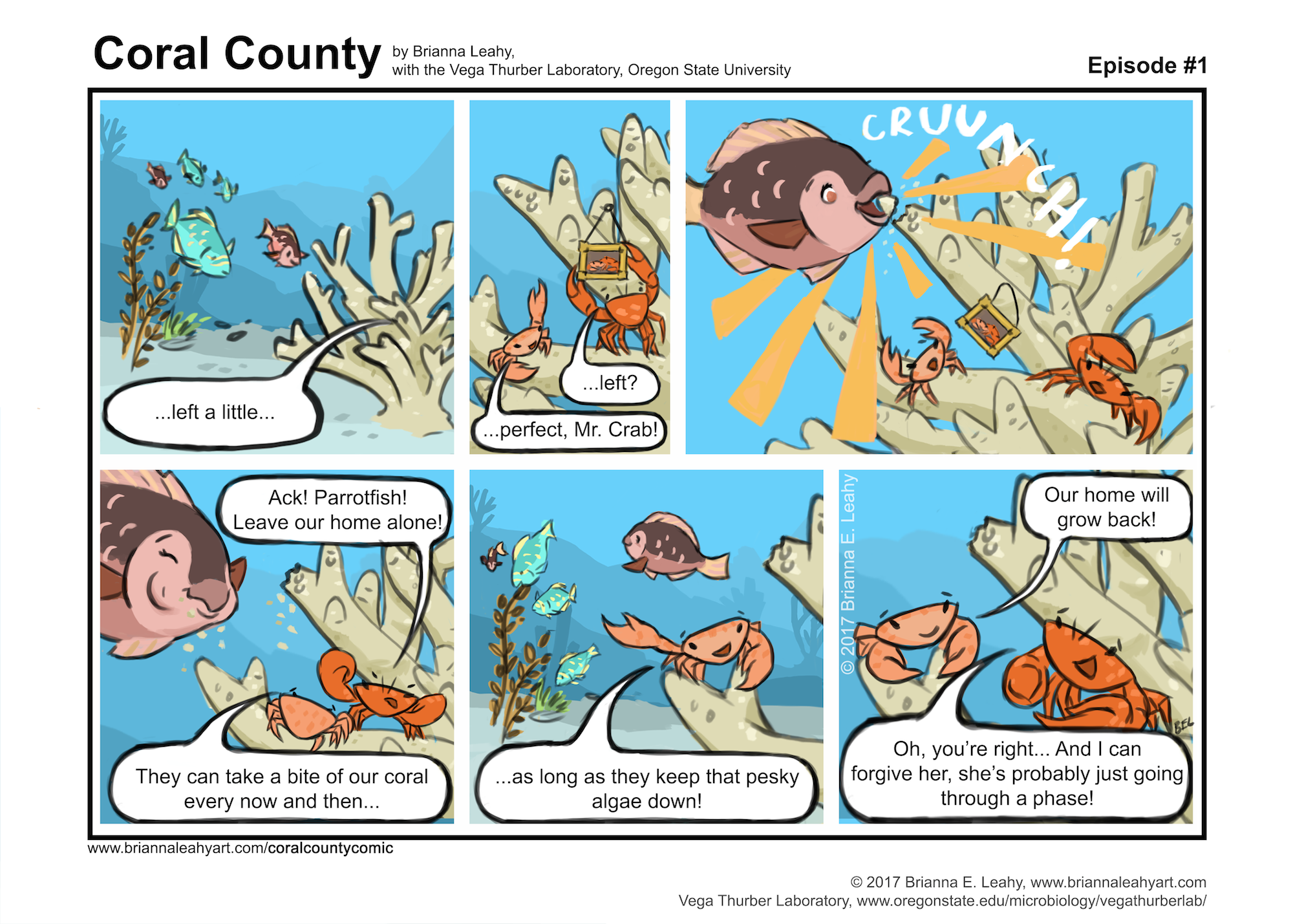 SizedforWeb_Parrotfish comic ep 1 v9e complete revised