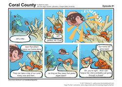 SizedforWeb_Parrotfish comic ep 1 v9e complete revised