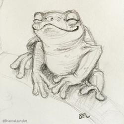 BriannaELeahy_Art_c2017_froggy