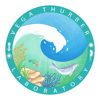 ocean, wave, seal, coral, parrot fish, seagrass, sea, microbes, science, logo