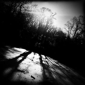 Thylacine - Single Cover - FINAL.jpg