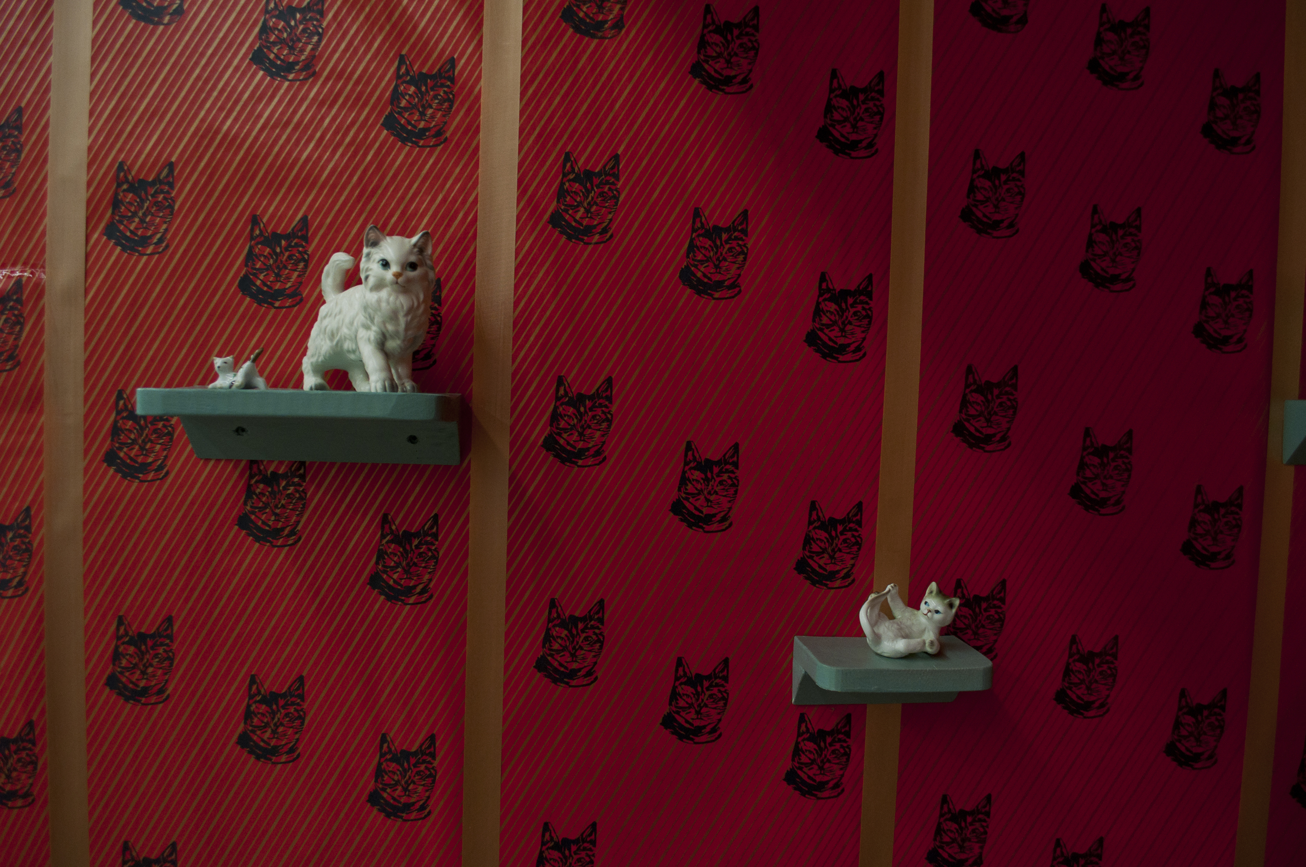 Cat Room I (detail)
