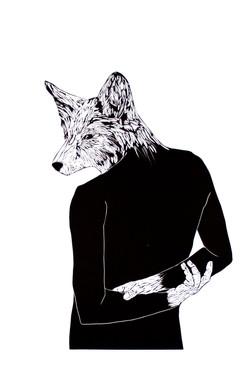 Coy Fox
