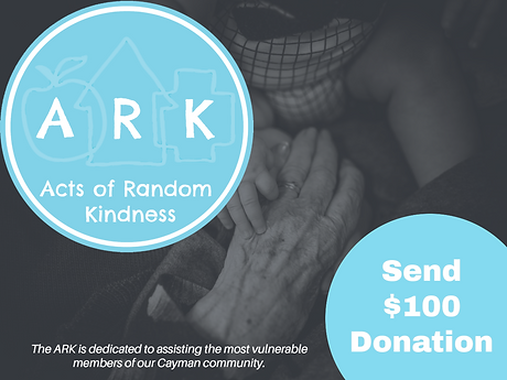 ARK $100 donation banner for site 2 copy