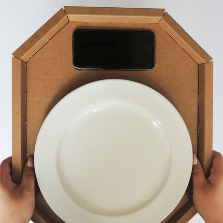 Portion Tray Concept