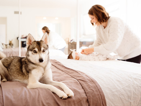 Do You Love Your Dog Less After Baby? (Honestly)