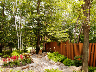 Aménager son jardin en terrain humide