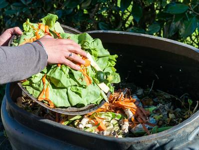 Compost au quotidien, quels effets?