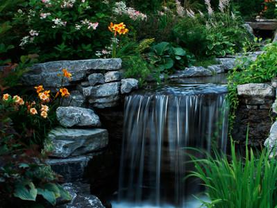 De l'eau dans nos jardins