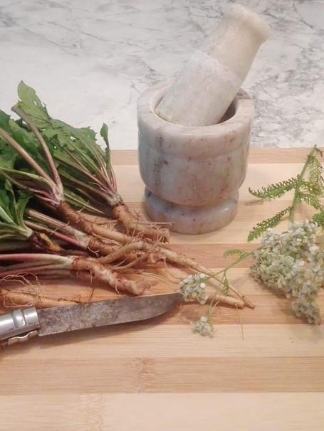 Plantes sauvages et remèdes de grands-mères