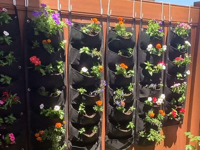Créer un jardin vertical mais pourquoi ?