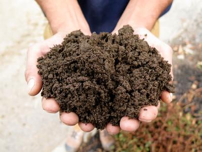 Ô sol, ô Humus, ô terre généreuse, qu'est-ce donc réellement que les terreaux ?