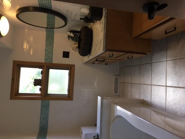 Marsha Larson Bathroom