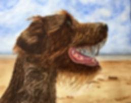 Gus 16 20 cropped.jpg
