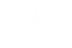 logo_maison_le_star.png
