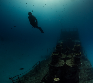 wreck-freedive-antje_edited.png