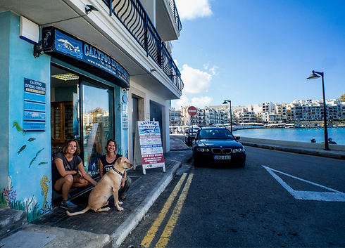 Calypso shop front at the sea front