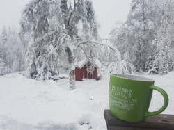 Mug in snow.jpg
