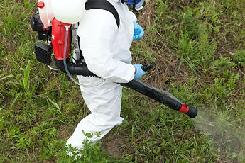 Pest control worker spraying insecticide