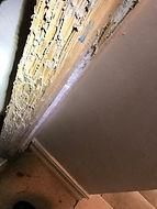 Termite Treatment in naples
