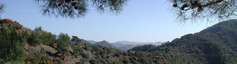 banner hills.jpg