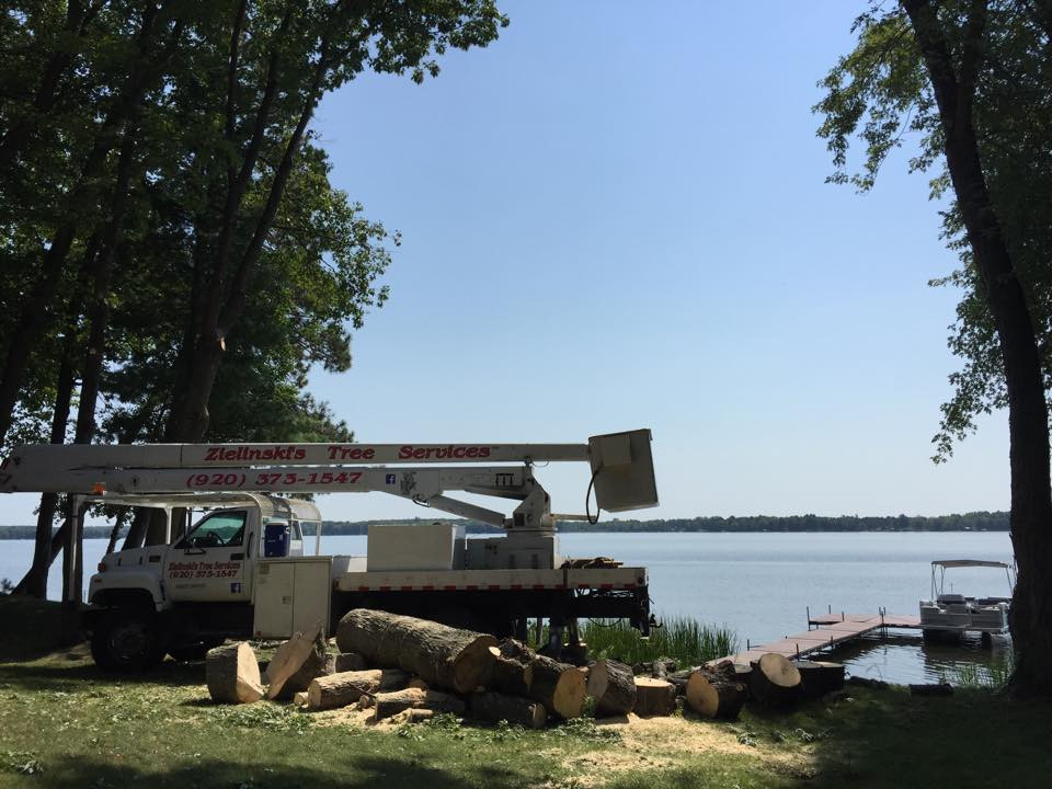 White Potato Lake Tree Removal Project