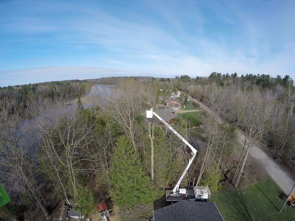 Oconto Falls Wisconsin Tree Removal Project