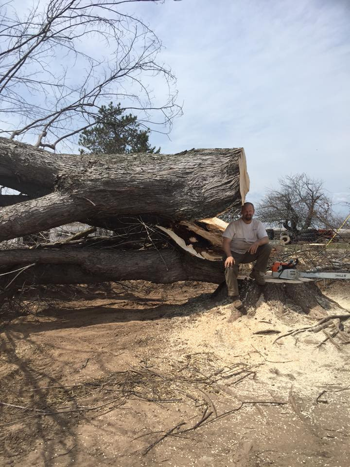 Tree removal project Crivitz Wisconsin 54114
