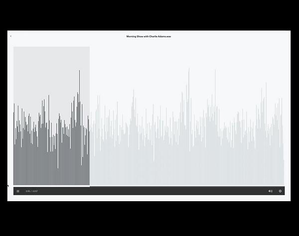 Screen Shot 2021-06-08 at 12.35.28 PM.pn