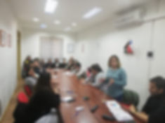 visita_a_La_Araucanía_1.jpg