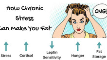 Is stress making you fat?