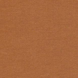 Camel Book Cloth
