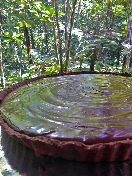 chocolate tart in the forest.jpg
