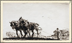Family & Parish History : Ploughing