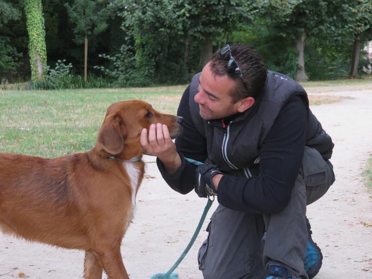 JP_Kauffmann-Éducateur_canin_1.JPG