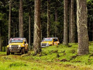 Catarinense Rally de Regularidade chega à Joinville neste sábado