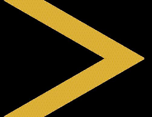 OBV-Gold-Arrow-v1.0.0.png