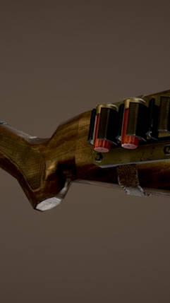 Mossberg Buck Shot