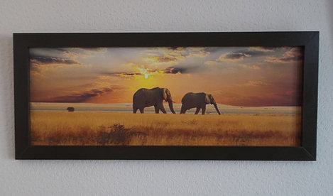 2 framed canvas prints of elephants