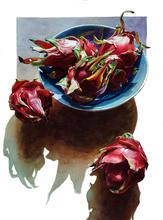 Dragon Roses