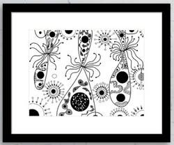 Framed Print 89