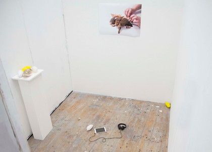 Installation shot of series in exhibition space.