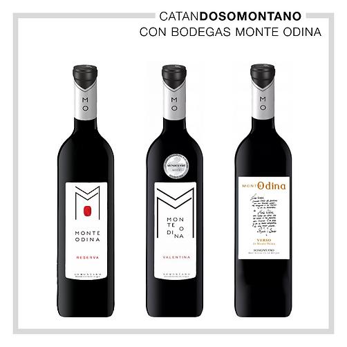 CatanDO SOMONTANO  Bodegas MONTE ODINA.j